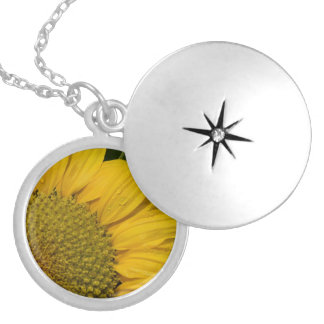 Macro Sunflower With Raindrops Locket Necklace