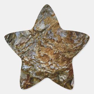 MACRO TREE BARK DETAIL STAR STICKER