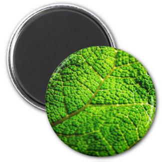 Macro verde de la hoja imán redondo 5 cm