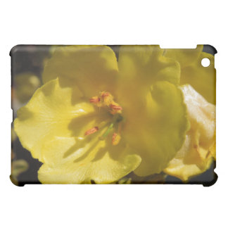Macro Yellow Mullein Flower iPad Mini Cover
