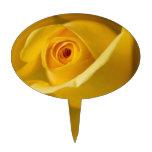 Macro Yellow Rose Cake Pick