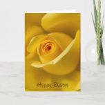 Macro Yellow Rose Easter Greeting Card
