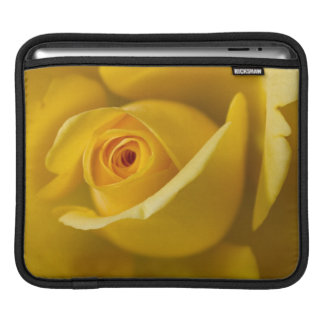 Macro Yellow Rose iPad Sleeve