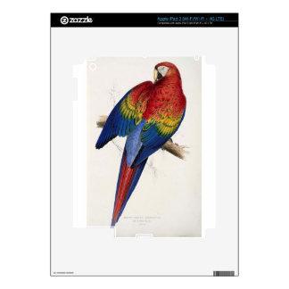 Macrocercus aracanga (Ara macao) by Edward Lear iPad 3 Decals