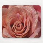 Macros Antique Rose Mouse Pad