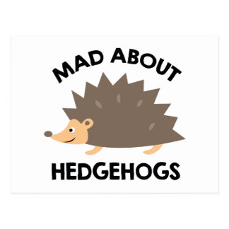 Mad About Hedgehogs Postcard