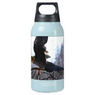 Mad Bird 10 Oz Insulated SIGG Thermos Water Bottle