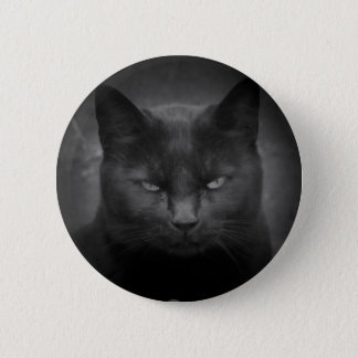 Mad Black cat spotlight Button