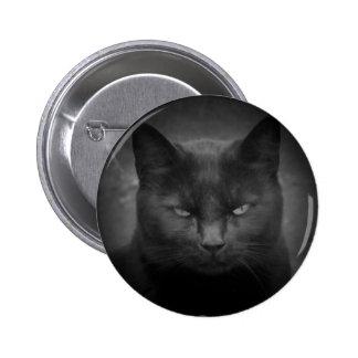 Mad Black cat spotlight 2 Inch Round Button