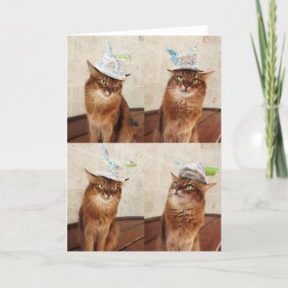 Mad Catter Funny Somali Cat Card