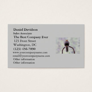 Mad Squirrel Business Card