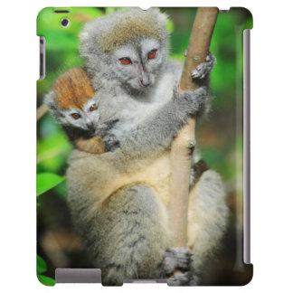 Madagascar, Andasibe, Ile Aux Lemuriens, Mother