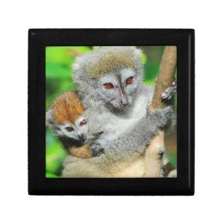 Madagascar, Andasibe, Ile Aux Lemuriens, Mother Trinket Boxes