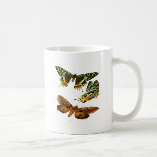 Madagascar Butterflies Coffee Mug