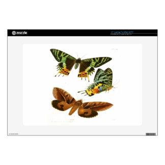 Madagascar Butterflies Laptop Decal