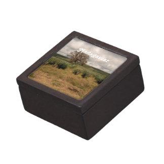 Madagascar Countryside Premium Jewelry Box