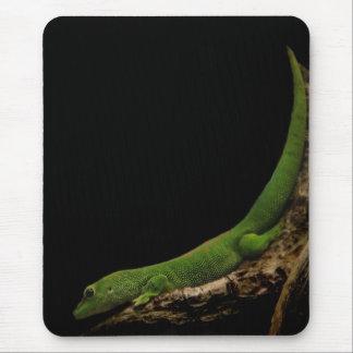 Madagascar day Gecko mousepad