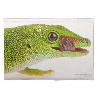 Madagascar day gecko (Phelsuma madagascariensis Cloth Place Mat