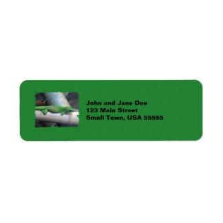 Madagascar Giant Day Gecko Green Address Labels
