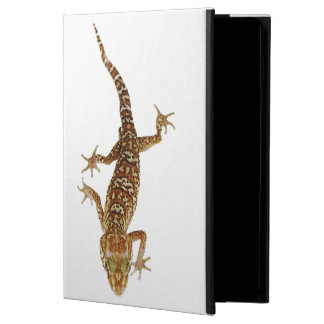 Madagascar ground gecko (Paroedura pictus) on Case For iPad Air