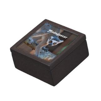 Madagascar Lemur Premium Jewelry Box