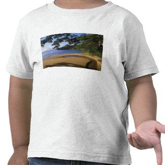 Madagascar, reserva especial Nosy de Mangabe, Camisetas