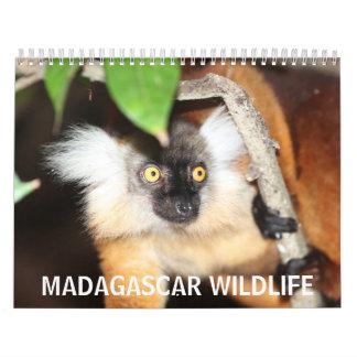 Madagascar Wildlife Wall Calendars