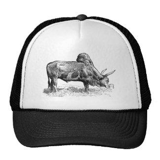 Madagascar Zebu Trucker Hat