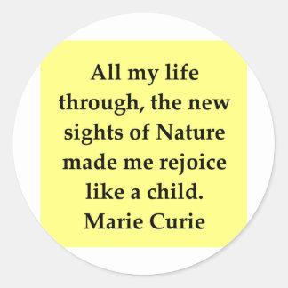 Madam Curie quote Stickers