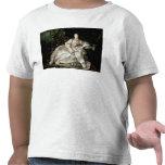 Madame de Pompadour T Shirt