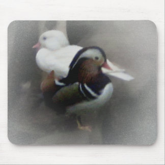 Madarin Duck and Friend Mouse Pad