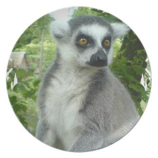 Madasgcar Lemur Plate