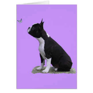 maddi & the butterfly greeting card