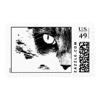 maddie black and white postage