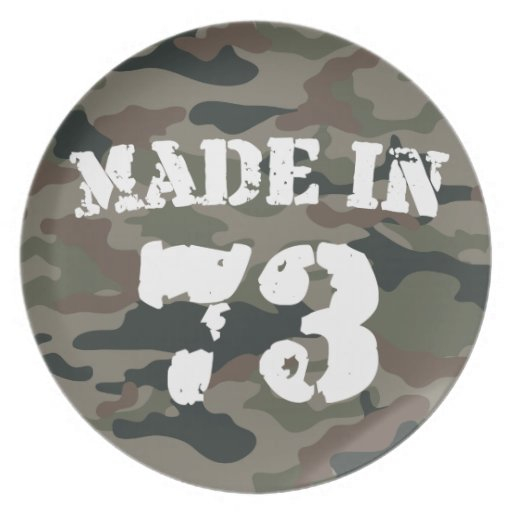 Made In 1973 Plates