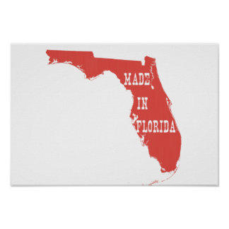 Made In Florida Poster