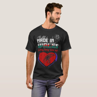 Made In Wales A Long Long Time Ago Pride Country T-Shirt