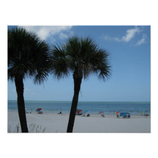 Madeira Beach Palm Trees Poster