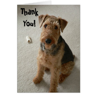 Madeleine Thank You Notecard Greeting Cards
