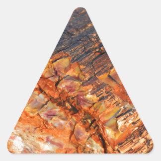 Madera aterrorizada pegatina triangular