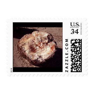 Madera aterrorizada - pequeño sello