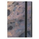 Madera del arce iPad mini cobertura