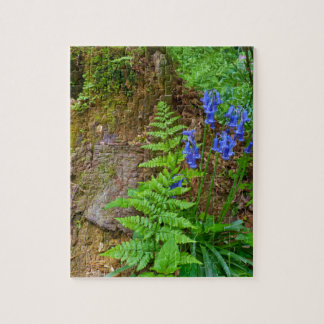 Madera del Bluebell Puzzles