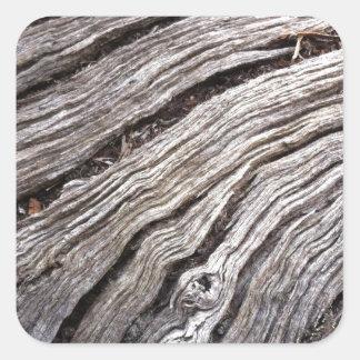Madera dura australiana blanqueada del árbol de calcomania cuadrada personalizada