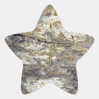 Madera fósil pegatina en forma de estrella