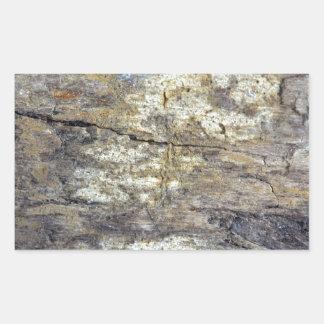 Madera fósil pegatina rectangular