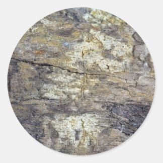 Madera fósil pegatina redonda