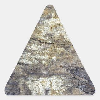 Madera fósil pegatina triangular