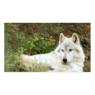 Madera o lobo gris tarjetas de visita