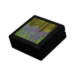Maderas abstractas del Bluebell Caja De Recuerdo
